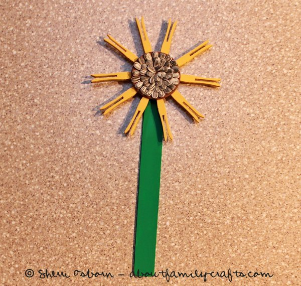 Glue on the sunflower stem