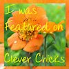 Clever Chicks Blog